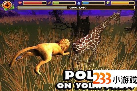 狮子模拟器 - 233小游戏