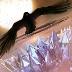 隐秘的洞穴汉化版 - 233小游戏